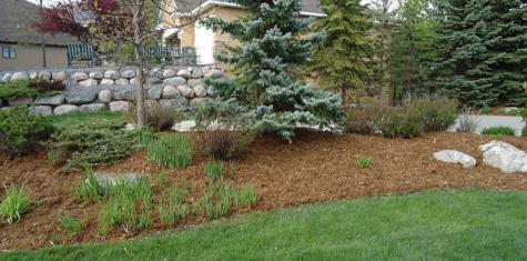 landscape cedar mulch