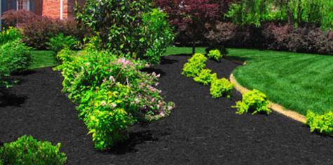 landscape photo black mulch detail